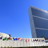 UN must recognise 'new normal' and break rapidly from conformity